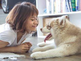 manfaat memelihara binatang