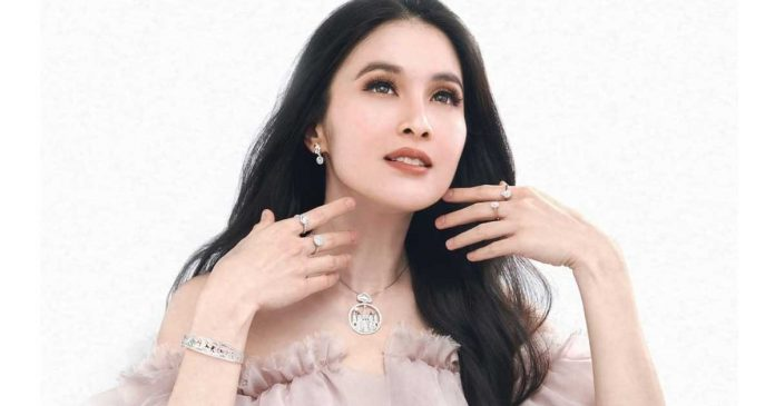 Bisnis Sandra Dewi