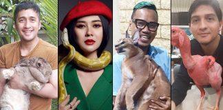 koleksi-hewan-eksotis-artis