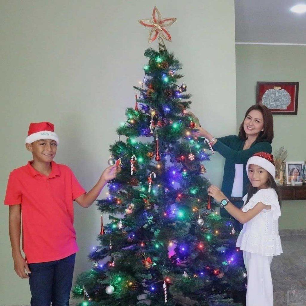 pohon-natal-artis-donna-agnesia