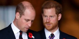 pangeran-william-harry