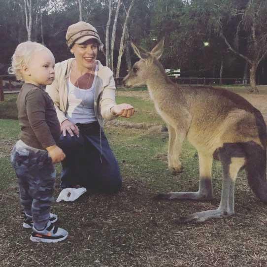 pink-donasi-untuk-australia