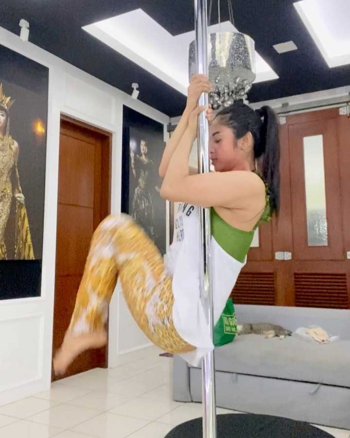 dewi-perssik-olahraga-pole-dance