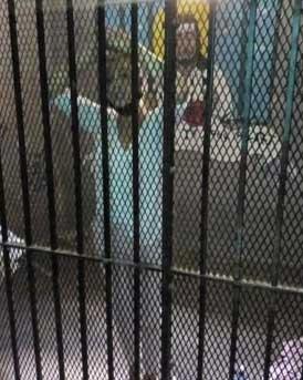 jasmine hartin di penjara