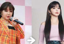 tips-diet-idol-k-pop